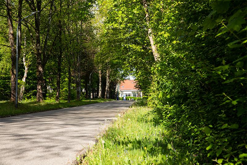 Umgebung Klinikum Zufahrtsstraße
